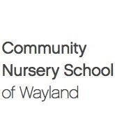 CNS Wayland