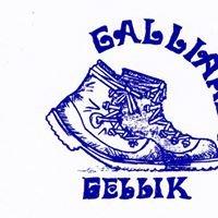 WSV De Gelliker Galliaren