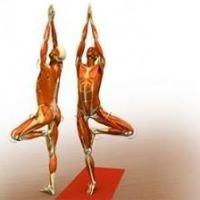 Yoga alliance ibiza