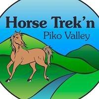 Horse Trekn Taranaki