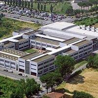 Istituto di Istruzione Tecnica e Liceale Russell Newton