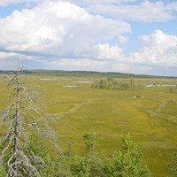 Patvinsuo-Nationalpark