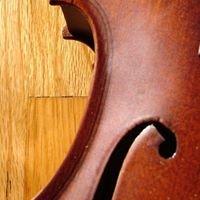 Viitasaaren alueen musiikkiopisto