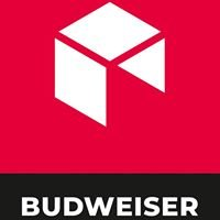 Budweiser Manufaktur für Möbel & Türen
