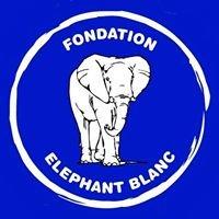 Fondation Elephant Blanc - FEB -