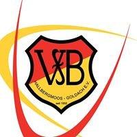 VfB Hallbergmoos-Goldach e.V