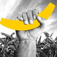 Bananas Activating Brands