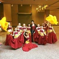 Art in Motion Dance Academy AIM Dance Inc