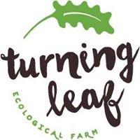 Turning Leaf Ecological Farm
