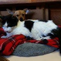 Animal Care Clinic of Prescott