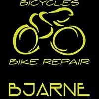 Bike Repair Bjarne