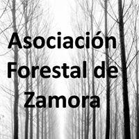 Asociación Forestal de Zamora