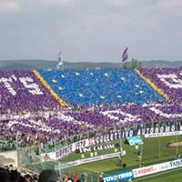 Stadio Artemio Franchi Firenze Curva Fiesole
