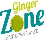 GINGER ZONE