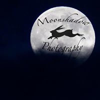 Moonshadow Photography -Andy Taylor