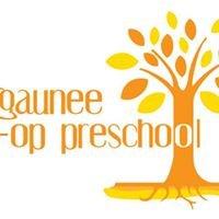 Negaunee Co-op Preschool, Inc.