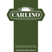 Carlino - Azienda Agricola