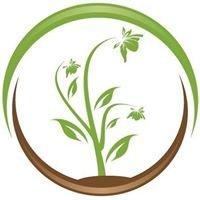 Terre Promise semencière artisanale