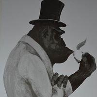 Kaffeegroßrösterei A.Joerges - Gorilla Kaffee