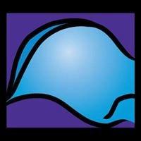 Biomechanical Services Inc.