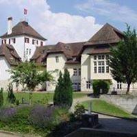 Ecole Internationale de Genève Campus de La Châtaigneraie