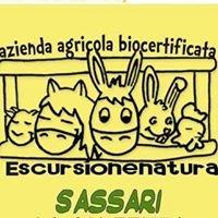 Escursionenatura azienda agricola biocertificata