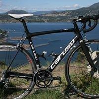 Caruso Bikes - Kelowna's ONLY bike company.