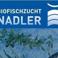 Biofischzucht Nadler