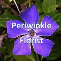 Periwinkle Florist