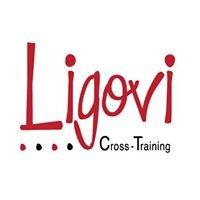 Ligovi Cross Training