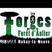 Les Forges de la Forêt d'Anlier