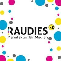D. Werner Raudies Gmbh & Co. KG