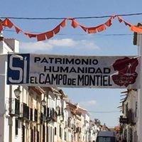 Plataforma Campo de Montiel Origen del Quijote