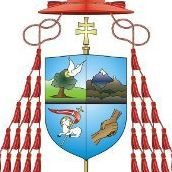 Archdiocese of Nairobi Youth