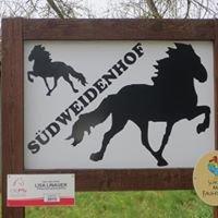 Islandpferde Südweidenhof