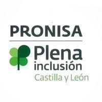 Asociación Pronisa Plena Inclusión Ávila