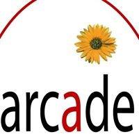 arcade sozialmarkt freistadt