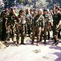 Udruga 142. brigade HV - Drniš