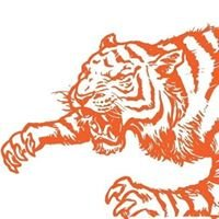 Tigerfight Foundation