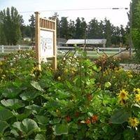 Rosehip Farm & Garden
