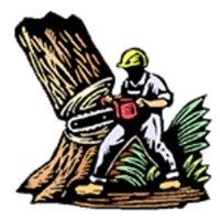 Z&B Tree Service