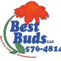 Best Buds LLC