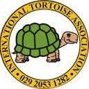 International Tortoise Association UK