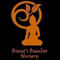 Brent's Bamboo Nursery