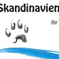 Skandinavien & Meer