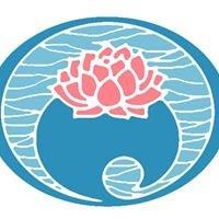 Austin Aqua Yoga