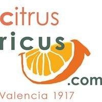 citrusricus.com