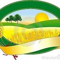Agricultura - La Cuevita Apaseo el Alto, Gto.