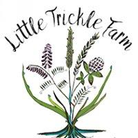 Little Trickle Farm