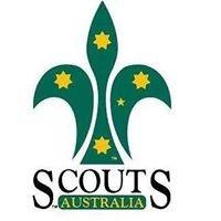 Palmwoods Scout Group